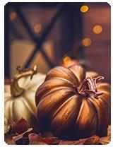 Fall pghoto